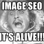 Image SEO is back!